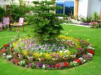 Цветочные клумбы — принцип выбора цветов и правила разбивки красивых клумб своими руками (130 фото)