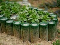 Клумба из бутылок — пошаговая инструкция как сделать из пластиковых бутылок простую и эффектную клумбу (115 фото)