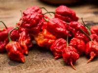 Красный перец польза и вред — обзор основных и необычных качеств и свойств перца (105 фото)