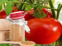 Подкормка дрожжами помидор и огурцов — лучшие составы и универсальные методы подкормки овощей (100 фото)