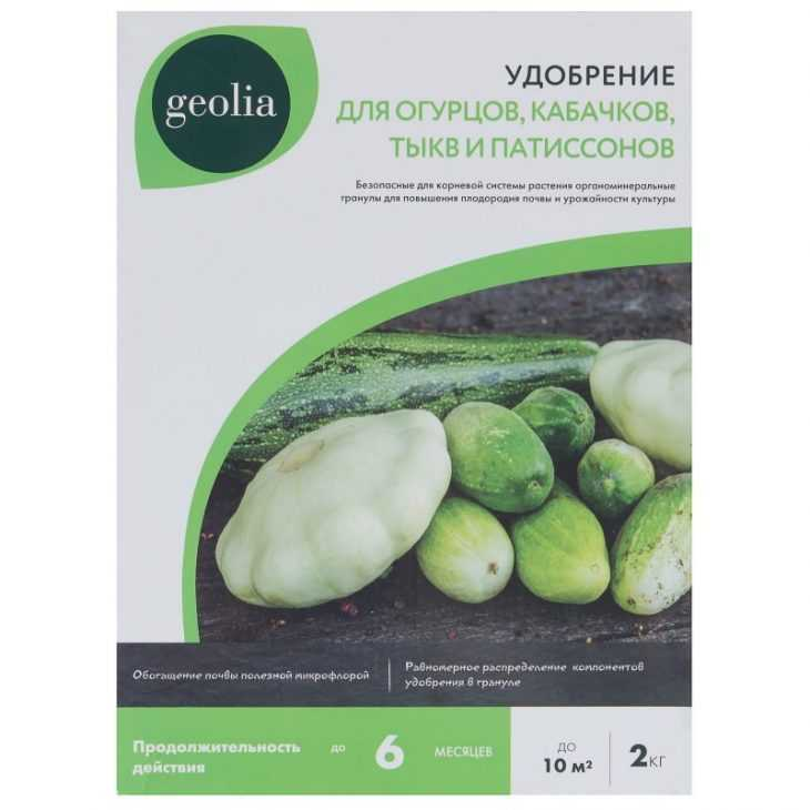 Чем подкормить огурцы - простые и эффективные схемы подкормок огурцов для хорошего роста (115 фото)