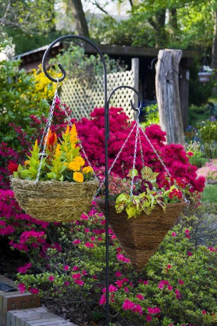 Декоративные клумбы - советы по выбору растений для создания изумительных клумб (150 фото)