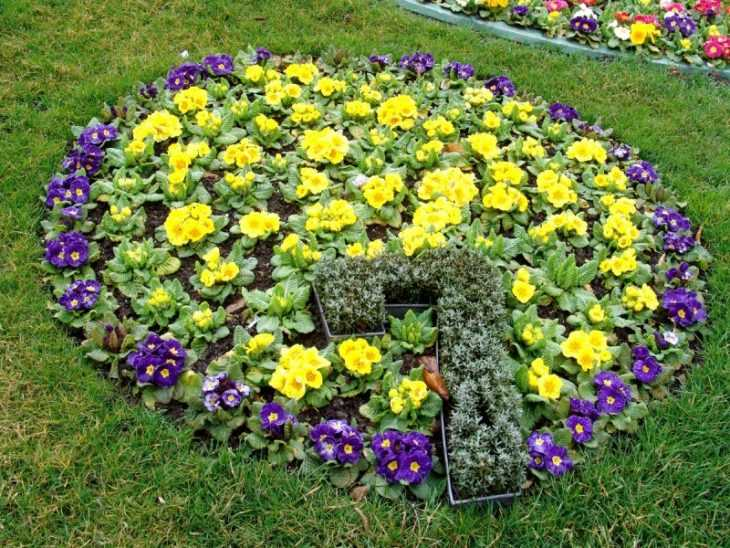 Как красиво оформить клумбу - идеи, схемы и варианты организации клумбы на участке ив саду (125 фото)