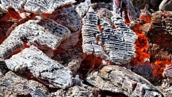Как подкормить огурцы золой - правила подкормки, выбор состава и особенности применения золы для огурцов (95 фото и видео)