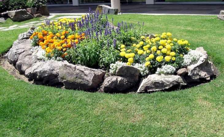 Многолетние цветы для дачи - идеи ландшафтных дизайнеров по выбору и применению многолетников (135 фото)