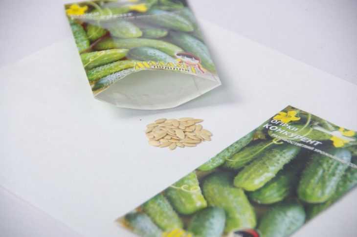 Огурец конкурент - фото сорта, внешний вид и отзывы экспертов. 115 фото и видео описание выращивания