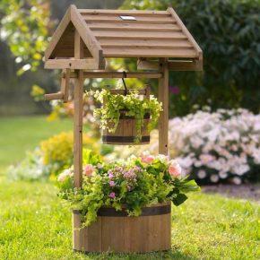 Украшения для сада — лучшие архитектурные и декоративные растения для сада и ландшафтного дизайна (115 фото)