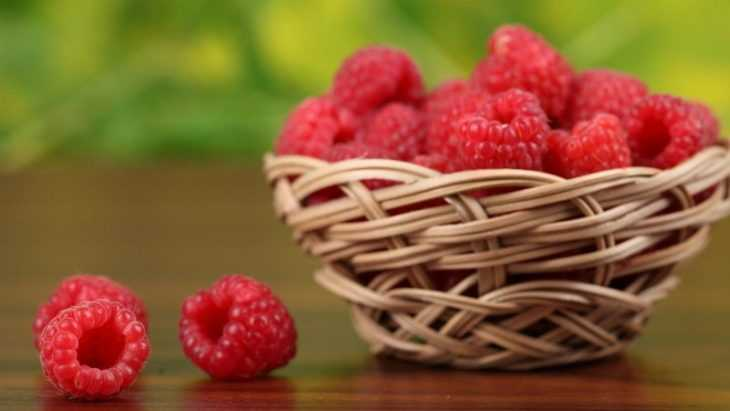 Чем подкормить малину - когда и как правильно подкармливать и как выбирать состав для подкормки (видео + 100 фото)