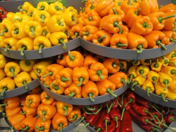 Чем подкормить перец: как правильно ухаживать за сладким перцем и что для этого нужно (130 фото)