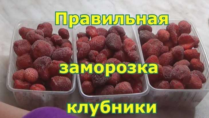 Как заморозить клубнику - подробная инструкция по заморозке и длительному хранению клубники