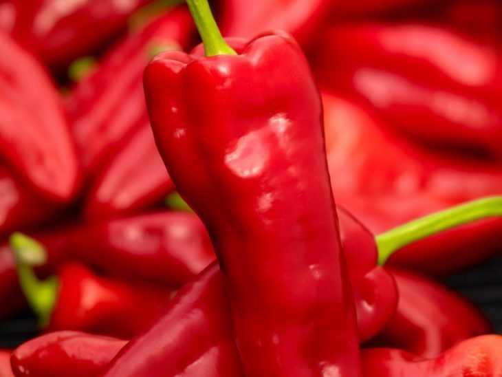 Перец рамиро - 95 фото и описание нюансов выращивания особого сорта перца