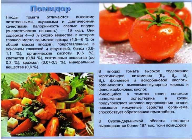 Польза помидора для похудения