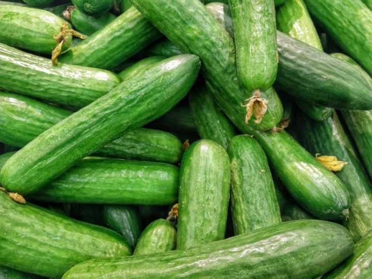Сода для огурцов: как применять при опрыскивании и поливе правильно. 135 фото и видео советы экспертов