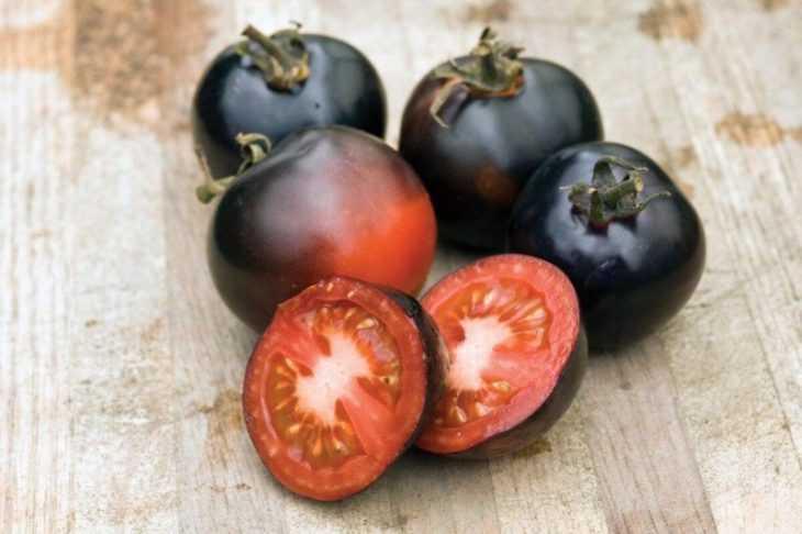 Томат черный принц - характеристика томата и советы как вырастить особый сорт помидор (125 фото)