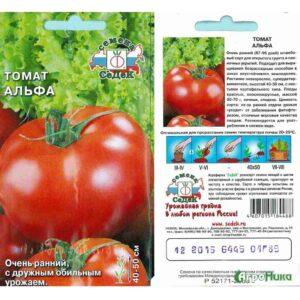 семена томатов Альфа