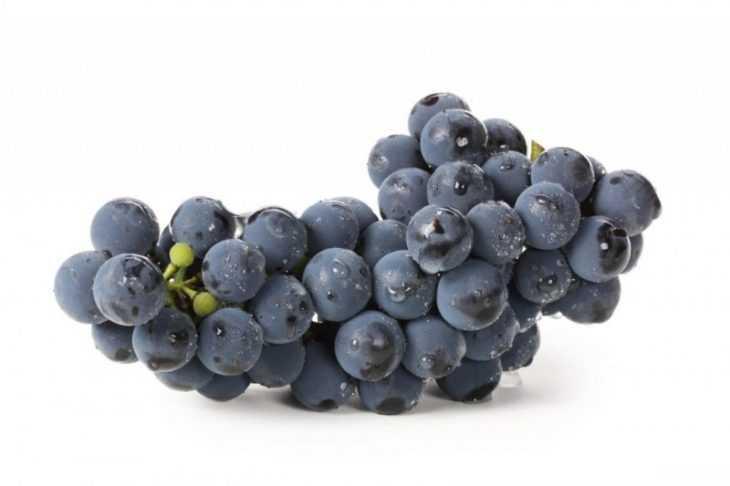 Виноград это ягода или фрукт - как правильно называть и как выращивать виноград (110 фото)