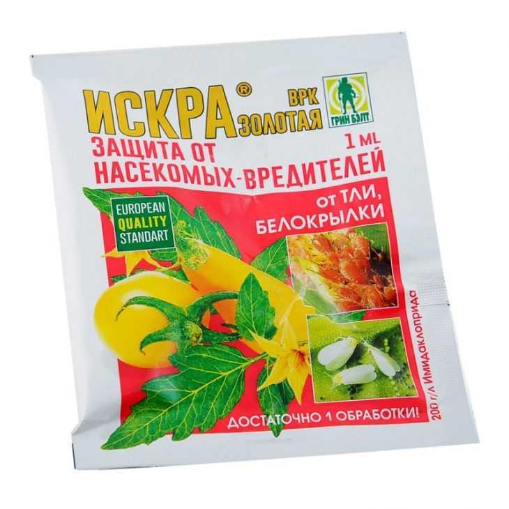 Вредители перца: как правильно обрабатывать и ухаживать за болгарским перцем правильно (120 фото)